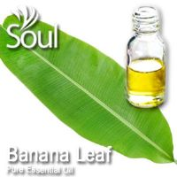 Pure Essential Oil Banana Leaf - 10ml