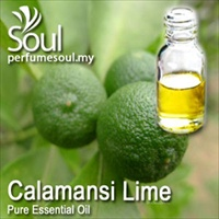Pure Essential Oil Calamansi Lime - 10ml
