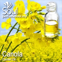 Carrier Oil Canola (Rapeseed) - 100ml